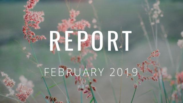 2019年2月の運営報告
