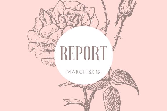 2019年3月の運営報告